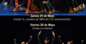 """X GALA FIN DE CURSO, organizada por el Conservatorio Profesional de Danza """"José Antonio Ruiz"""""""