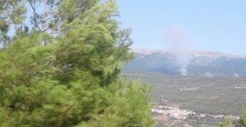 Evacuadas 100 personas tras declararse un incendio forestal en Yeste