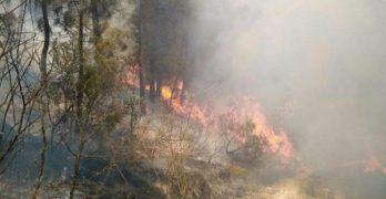 Descartan que el incendio de Yeste y Molinicos fuera provocado